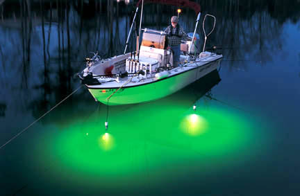 now available !! hydro glow fish lights… catch the night, Reel Combo