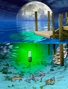fishing waders pro introduces new hydro glow fishing lights, Reel Combo